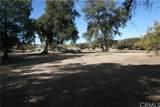 30303 Chihuahua Valley Road - Photo 13