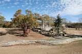 30303 Chihuahua Valley Road - Photo 16