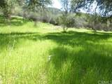 0 Vineyard Canyon (Parcel 29) Road - Photo 1