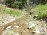 0 Vineyard Canyon (Parcel 29) Road - Photo 2