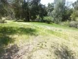 0 Vineyard Canyon (Parcel 29) Road - Photo 12