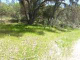0 Vineyard Canyon (Parcel 29) Road - Photo 15