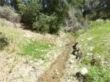 0 Vineyard Canyon (Parcel 29) Road - Photo 16