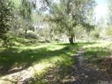 0 Vineyard Canyon (Parcel 29) Road - Photo 18
