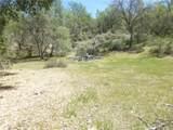 0 Vineyard Canyon (Parcel 29) Road - Photo 20