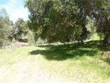 0 Vineyard Canyon (Parcel 29) Road - Photo 23