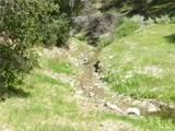 0 Vineyard Canyon (Parcel 29) Road - Photo 24