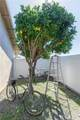 24052 La Hermosa Avenue - Photo 38