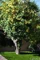 28652 Malabar Road - Photo 47
