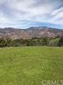 11208 Sulphur Mountain Road - Photo 9