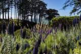 315 Seascape Resort Drive - Photo 15