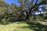 14293 Bear Creek Road - Photo 43