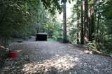 14293 Bear Creek Road - Photo 50
