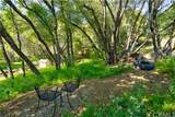 47145 Lookout Mountain Drive - Photo 3