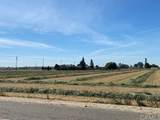 2213 Tegner Road - Photo 7