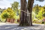 20 Granite Creek Road - Photo 51