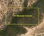 41 Blackstar Canyon - Photo 7