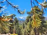 0 Ponderosa Ranch Road - Photo 1
