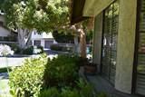 465 Las Palomas Drive - Photo 62