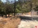 32095 Hidden Highland Road - Photo 6
