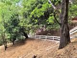 23674 Hillside Drive - Photo 53