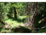 14051 Ettawa Springs Road - Photo 20