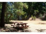 14051 Ettawa Springs Road - Photo 25