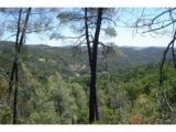 14051 Ettawa Springs Road - Photo 33