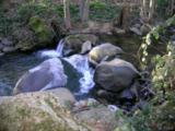 14051 Ettawa Springs Road - Photo 9