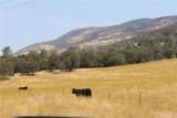 0 State Highway 49N - Photo 3