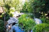10649 Boulder Canyon Road - Photo 33