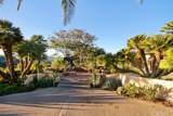 24656 Fuerte Road - Photo 47