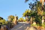 24656 Fuerte Road - Photo 52
