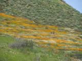 0 Camino Del Serenah - Photo 6
