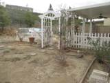 34124 Zinnia Court - Photo 23