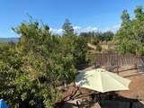 14345 Capri Drive - Photo 17