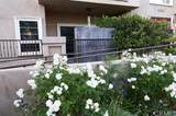 8555 Cashio Street - Photo 29
