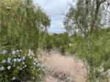 30 Peppertree Drive - Photo 6