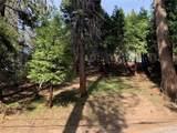 24895 Felsen Drive - Photo 6