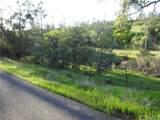 0 Richardson Springs Road - Photo 4
