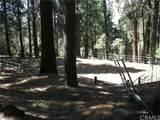 21546 Peak Circle - Photo 21