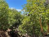 44102 Big Oak Dr./Carancho Rd - Photo 23