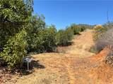 44102 Big Oak Dr./Carancho Rd - Photo 24