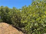 44102 Big Oak Dr./Carancho Rd - Photo 25