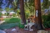 26901 Calamine Drive - Photo 9