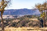 10880 Creek Road - Photo 12