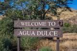 35356 Sierra Vista Drive - Photo 50