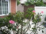608 Palm Drive - Photo 5