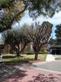 6884 Alondra Boulevard - Photo 21