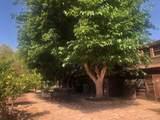 34729 Petersen Road - Photo 60